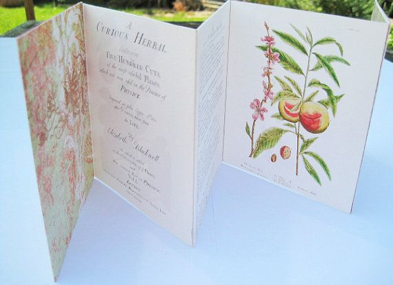 Handmade card botanical illustrationMothers Day. by modestly, £10.00