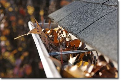 Are you losing the battle against your gutter cleaning? Then let us do it at : Gutter cleaning Texas.