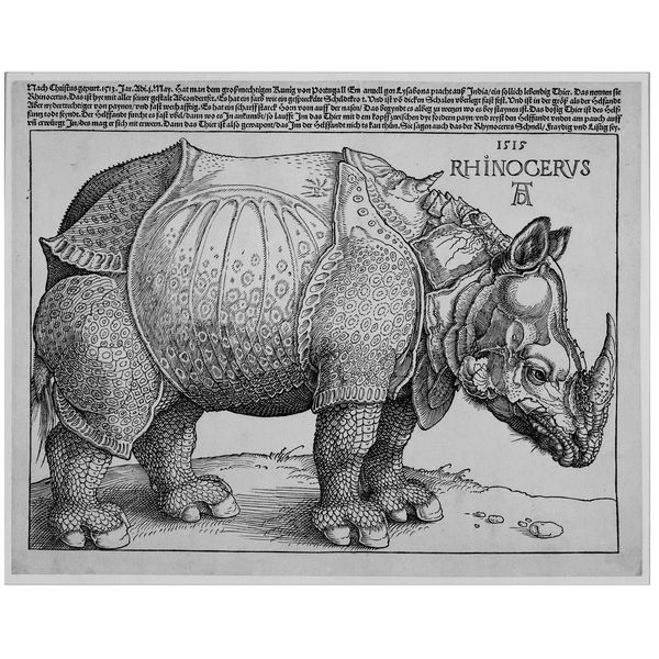 Albrecht Dürer's Rhinoceros,  a drawing and woodcut  Germany, AD 1515    This celebrated woodcut records the arrival in Lisbon of an Indian rhinoceros on 20 May 1515.