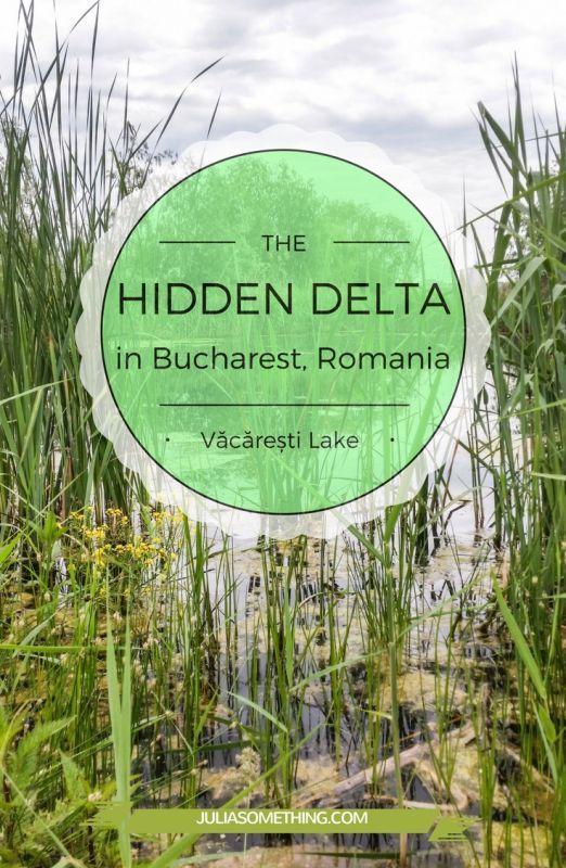HIDDEN DELTA in #Bucharest, #Romania - VACARESTI Lake A unique place, yet to be discovered.  #delta #lake #nature