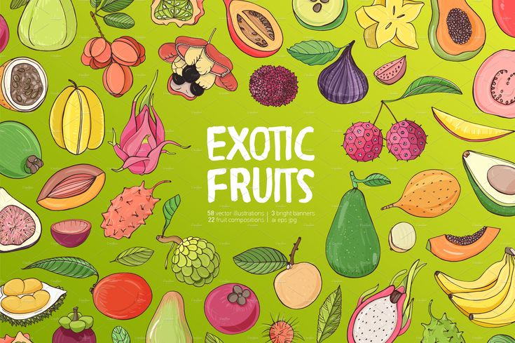 exotic tropical fruits bundle - Set of exotic tropical fruits. Collection of whole fruit and cutaway. Lychee, papaya, figs, guava, avocado, aki, banana, dogwood, durian, fig, carambola, kivano, longan, mango, mangosteen, maracuya, menteg, pitahaya, rambutan, sapote mame, tamarillo, cherimoya, feijoa, coconut. Hand drawm vector illustration. 23 fruit composition, 58 vector illustration fruits (fruit, in section, with leaf). $13 #ad #icons #vector