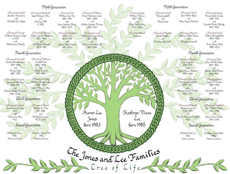 8 best Family Tree images on Pinterest