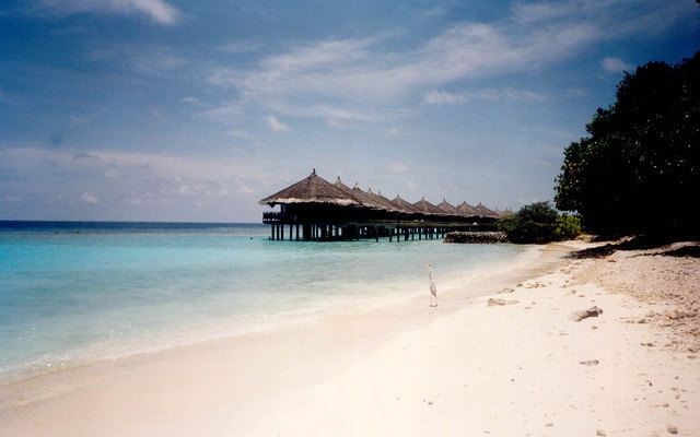 Maldive. Atollo Rashdoo