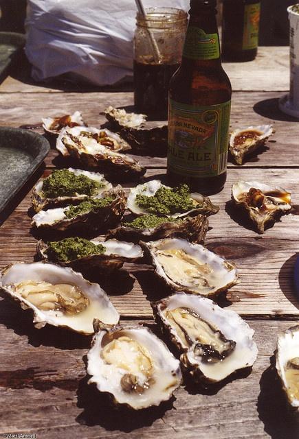 Hog Island Oyster Farm, Tomales Bay California