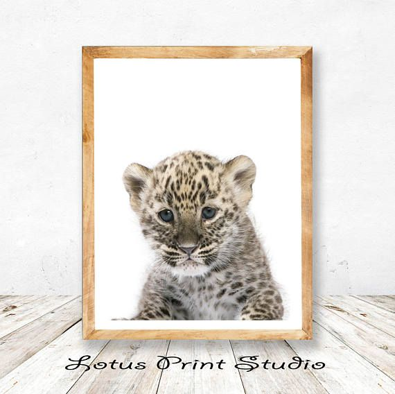 Leopard Baby Print Baby Shower Gift Kids Room Decor Nursery