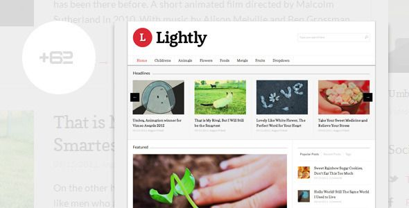 Lightly - Magazine WordPress Theme   http://themeforest.net/item/lightly-magazine-wordpress-theme/2583570?ref=damiamio      Lightly – Magazine WordPress Theme  Lightly is a WordPress theme for news or magazine website, neat designed, well coded and more importantly easy to use.  Features   Responsive/Adaptive layout, fits in any screensize  Coded on HTML5 and CSS3   Still looks good on older browser  Support most WordPress 3 features like Custom menu, Background options, Post format…