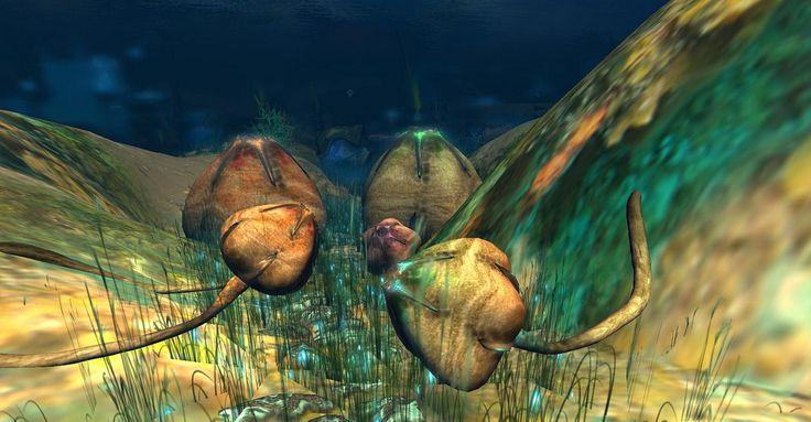Fantasy Faire 2011 - Sea of Mer_041