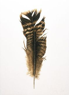 Contemporary artwork, Turkey tattoos and Feather drawing on Pinterest