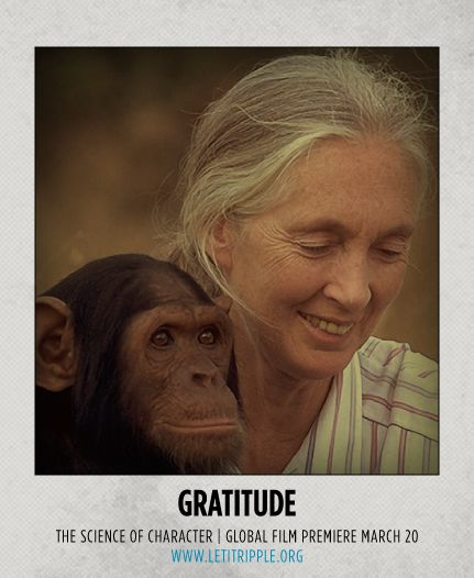 Jane Goodall is our inspiration for #Gratitude #CharacterDay letitripple.org