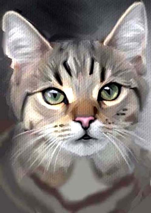 ACEO OIL PAINTING  CAT GREY TABBY GREEN EYES        BY BRADBERRY #Expressionism
