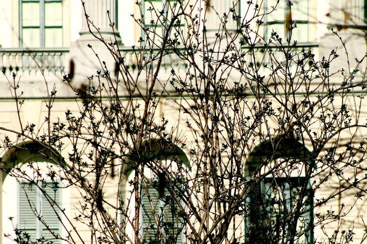 Lo sapevate che a Milano c'era un angolo di Paradiso? Ma soprattutto ve lo immaginate il Paradiso? Eccolo, in questo splendido giardino, anticamente parco privato della Villa, sembra proprio di essere altrove dal caos cittadino…