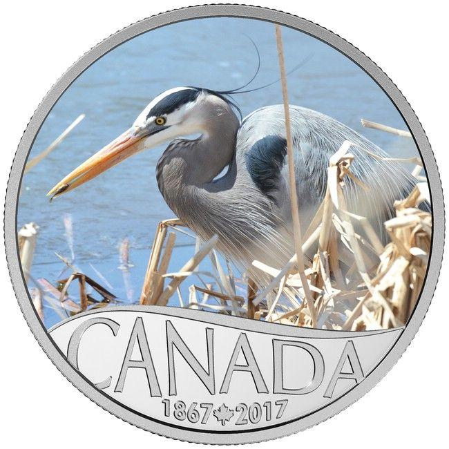 10 Dollar Silber 150 Jahre Kanada: Kanadareiher MP