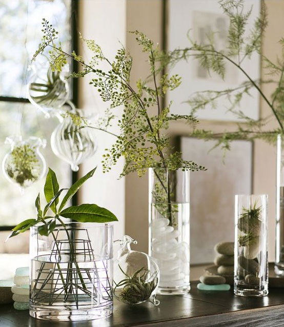Display Display Ideas Amp Metal Wire Vase Frogs From Pottery Barn I Especially Like The