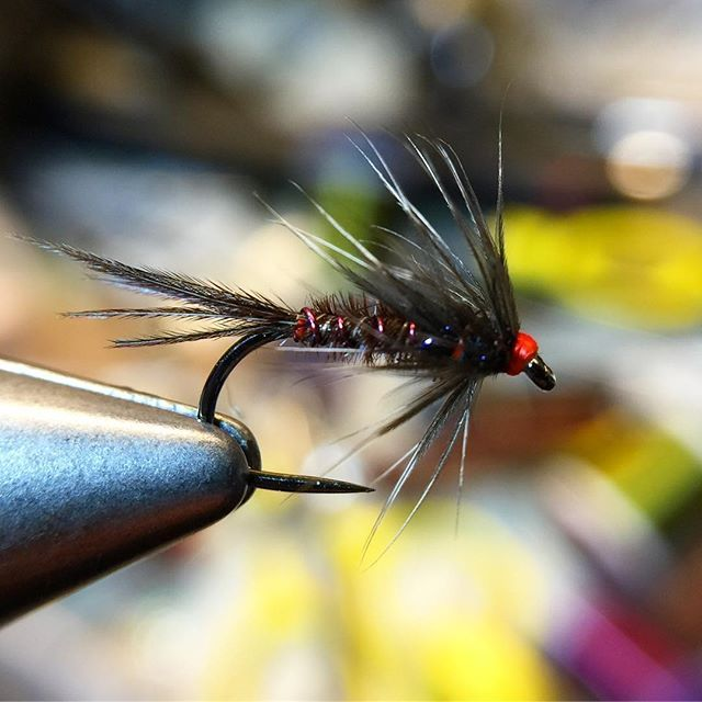 155 best crappie sunfish images on pinterest fly tying for Ice fishing flies