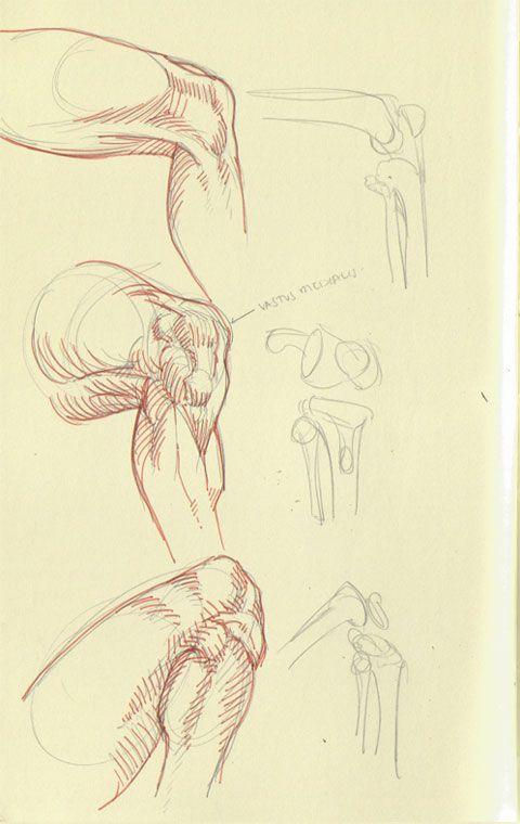 Arakaki-dessin-anatomie-humaine_1                                                                                                                                                                                 Plus