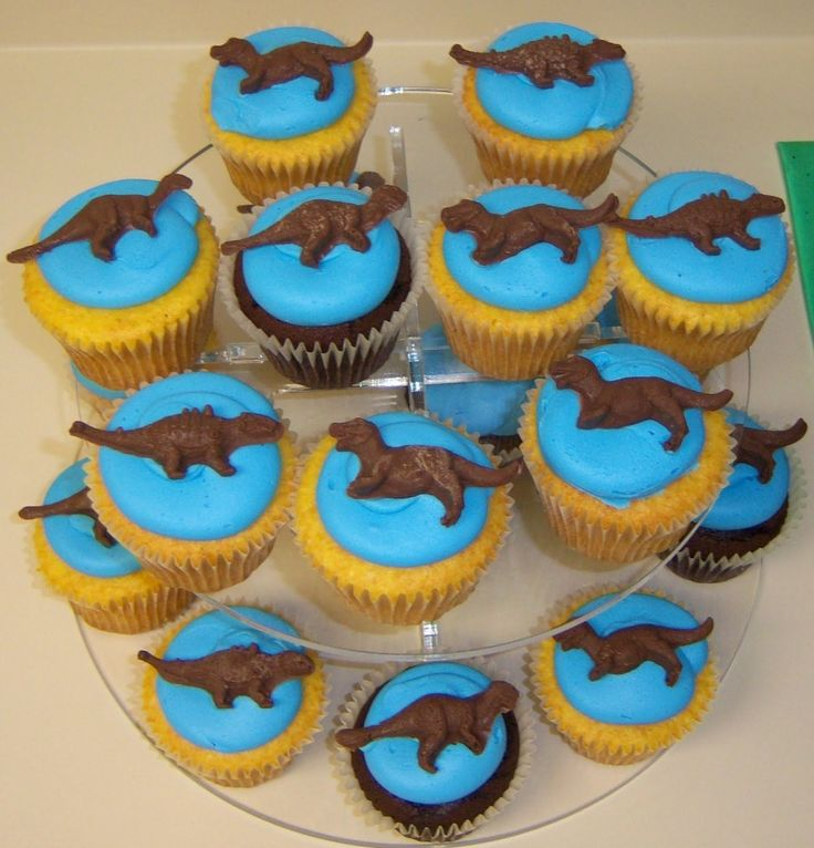 Cake Decorating Stores In Greensboro Nc : 1000+ ideas about Dinosaur Cupcake Cake on Pinterest ...