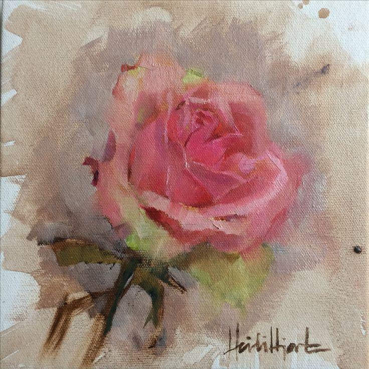 """A Rose is a Rose"" SOLD by Finnish Artist Heidi Hjort | heidihjort.com oil on canvas 2017 SOLD | rose painting, roses, pink rose painting, floral painting, home decor, livingroom decor, interior decor, wall decor, art for sale, decor, kitchen decor"