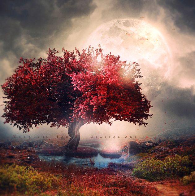 Dream forever... by Aeternum-Art on DeviantArt