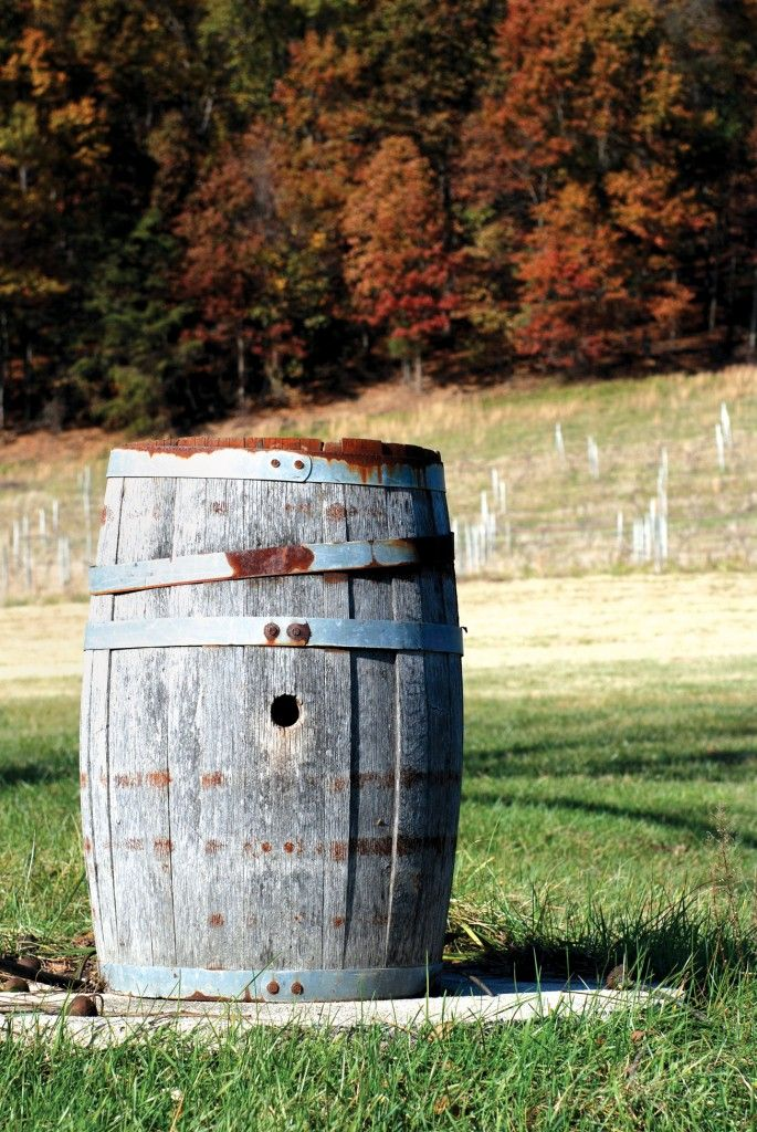 17 Best Images About Maryland Wine On Pinterest Elk