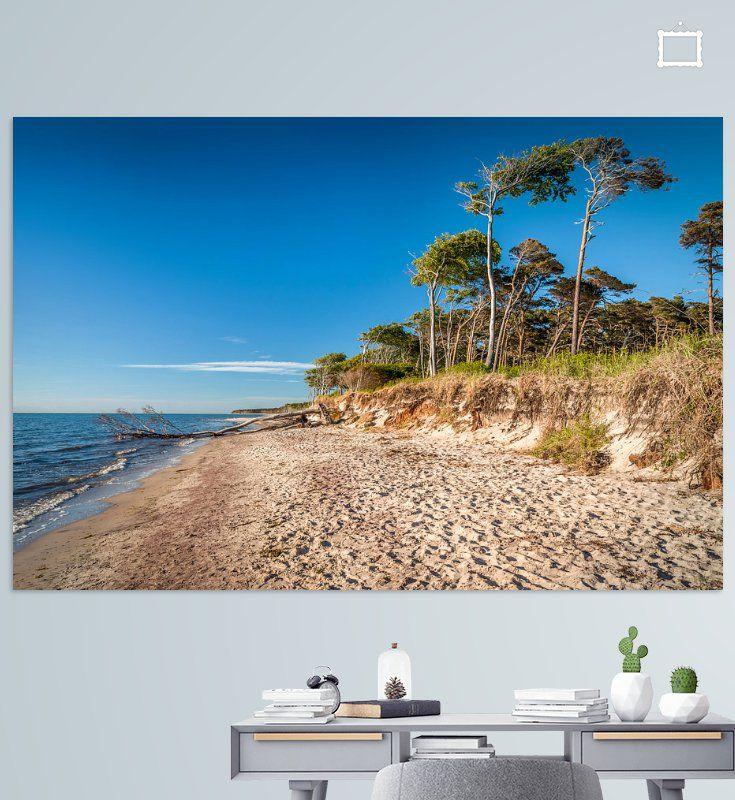 baume am wilden darsser weststrand poster christian muringer ohmyprints foto kunstdrucke auf leinwand 40x60 online bestellen