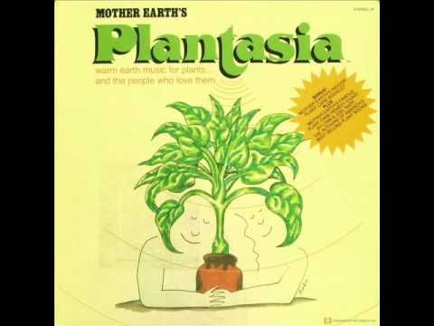 Mort Garson [Plantasia 1976] - Ode To An African Violet - YouTube