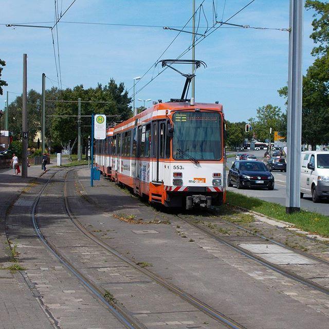 #düwag #duewag #m8c der #mobiel an der #voltmannstr  #stadtbahn #bielefeld  Mit von der Partie war @humphry2608  #eisenbahnbilder  #eisenbahnepoche  #eisenbahnfieber  #eisenbahnfotografie  #rsa_theyards  #pocket_rail  #heyfred_lookatthis  #trb_express  #train_nerds  #trainphotographics  #trains_worldwide  #railways_of_our_world  #railways_of_germany #best_of_trainspotting #daily_crossing by transportspotter_nrw