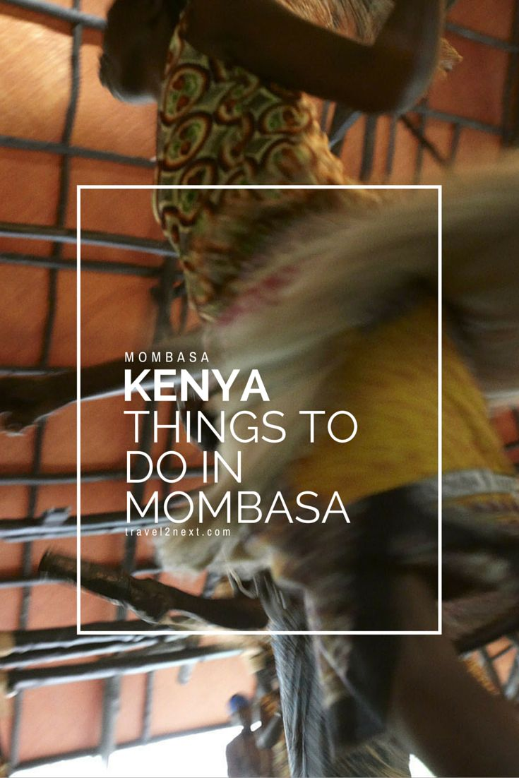 Have you been to Mombasa in Kenya? Here are some popular things to do.