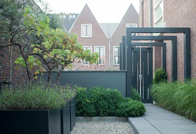Moderne stadstuinen | Onze tuinen - BUYTENGEWOON