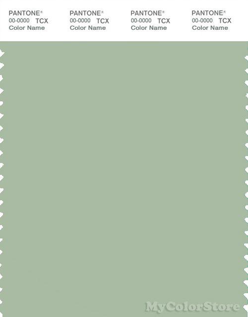 pantone color smoke green | PANTONE SMART 15-6315 TCX Color Swatch Card | Pantone Smoke Green