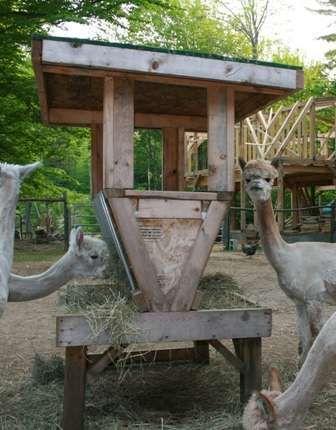 Build a Homemade Alpaca Hay Feeder #Alpaca #TheAlpacaDaily www.TheAlpacaDaily.com http://astore.amazon.com/alpacashoppe-20 https://paper.li/TheAlpacaDaily/1394376102