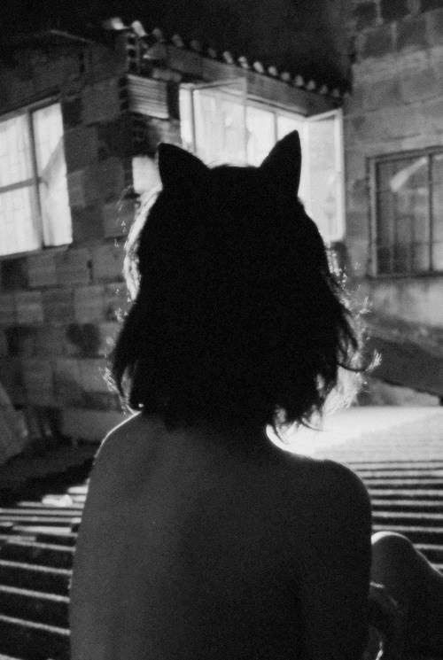 -É claro que eu te ajudo! -Otimo! -Com uma condição... Sirius suspirou já sabendo o que viria -Soncerinos... oque é? -Me ajuda a me transforma em uma animaga tb. -Oque? Pq? -É pegar ou lagar.  -Ok. Tudo bem.   O resultado disso não poderia ser mais surpriendente...  (Ela se transforma em uma gata.)