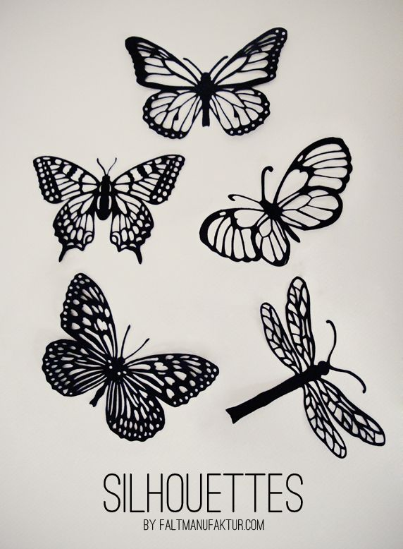 Papercut Moths, Butterflies and Dragonflies Scherenschnitt Falter, Schmetterlinge und Libellen