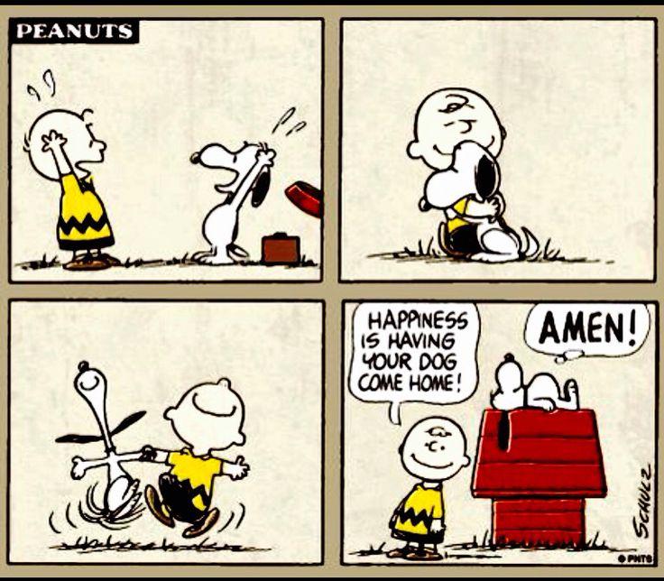 1844 besten peanuts bilder auf pinterest charlie brown peanuts comics und snoppy - Charlie brown zitate ...