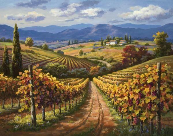 Sung Kim - Vineyard Hill II - Fine Art Print - Global Gallery