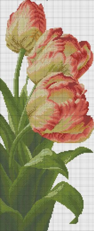 Cross stitch - flowers: Tulips (free pattern - chart)