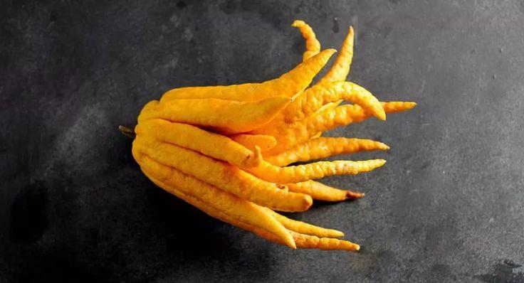 Его еще называют рукой Будды. Мякоти там мало, так что есть эту штуку не очень удобно, зато из нее получаются отличные цукаты и приправы для салатов. В Индии этот плод используется для жертвоприношений. По преданию, Будда предпочитает плоды, «пальцы» которых находятся не в открытом, а закрытом положении, как у руки во время молитвы.