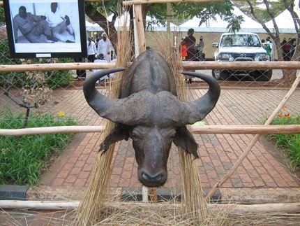 Se il continente dove la storia dell'uomo ha avuto inizio continua ad essere per molti una meta da sogno, la Fiera del Turismo di Harare - viva, effervescente, dai mille colori e sorprendentemente organizzata - promette di tradurre in futuro questi sogni in concrete realtà #Sanganai #Africa #Zimbawe
