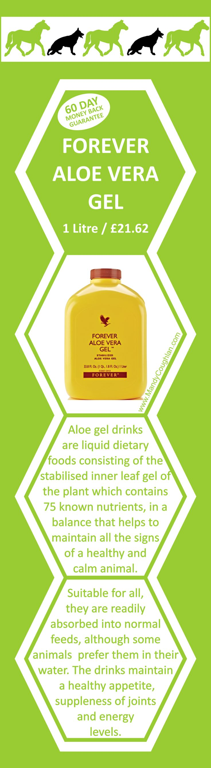 Aloe Vera Gel, 1 Litre for £21.62. Email Mandy@MandyCoughlan.com or order online at https://www.foreverliving.com/retail/entry/Shop.do?store=GBR&language=en&distribID=440500006105&itemCode=015 #aloe #health #forever #digestion #skin #animals