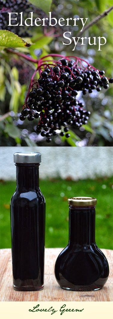 Lovely Greens | The Beauty of Country Living: Elderberry Syrup Recipe