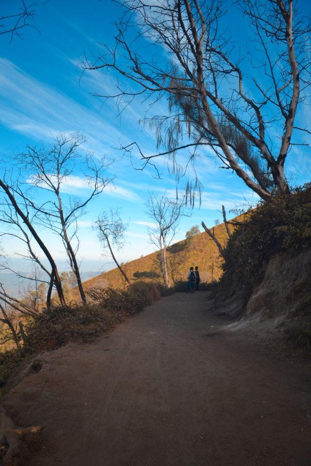 Jalan menuju kawah ijen Banyuwangi