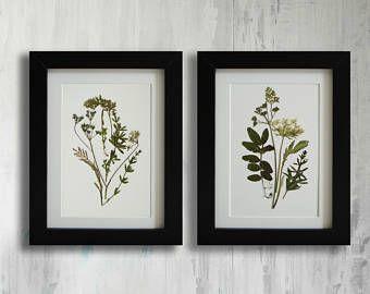 Juego de 2 impresión herbario botánico grabados sin enmarcar grabados flor prensada arte conjunto de arte grabado de la pared de la flor seca de impresiones establece planta de arte botánico