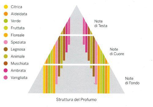 Piramide olfattiva - principali note di testa cuore e fondo - AccidiosaV