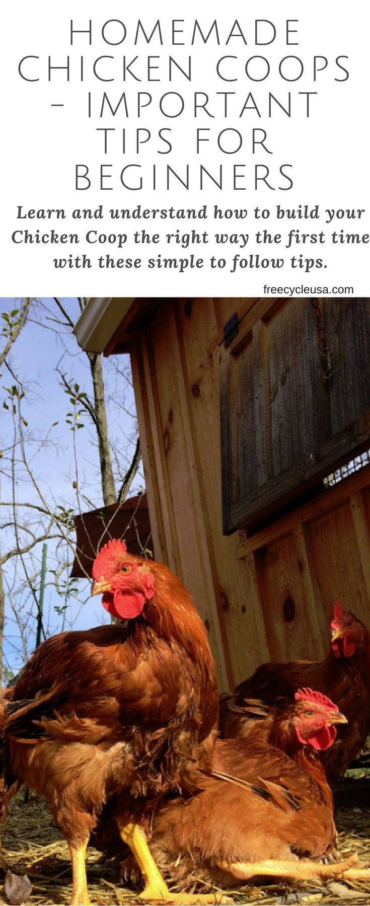 Homemade Chicken Coops - Important Tips For Beginners - http://www.freecycleusa.com/homemade-chicken-coops/