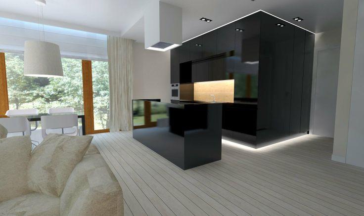 modern black kitchen -    interior design by Dmowska Design Patrycja dmowska / projekt restauracji Dmowska Design Patrycja Dmowska