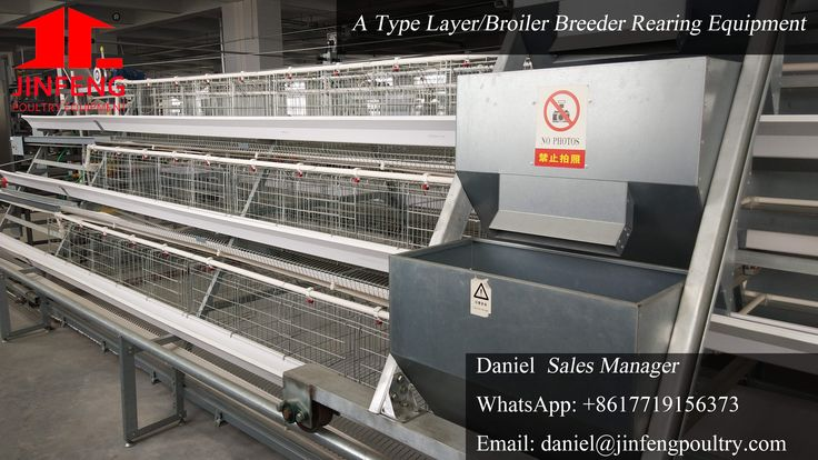 Henan Jinfeng Poultry Equipment Co,.Ltd is the pioneer and specialist in China Poultry Equipment Manufacture. We are now the largest manufacturer for the Poultry Cages and coupled Automatic Equipment including the Automatic Feeding & Drinking System, Egg-Collection System, Chicken Manure System, Chicken House Environmental Control System. Jinfeng continue to innovate and aim to make every customer be satisfied. Many customers choose to cooperate with us due to our competitive price and…
