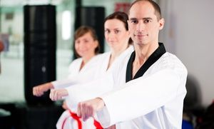 Groupon - One or Two Months of Taekwondo Classes with Uniform or After-School Program at Sumner Taekwondo Academy (Up to 64% Off) in Sumner. Groupon deal price: $0.55