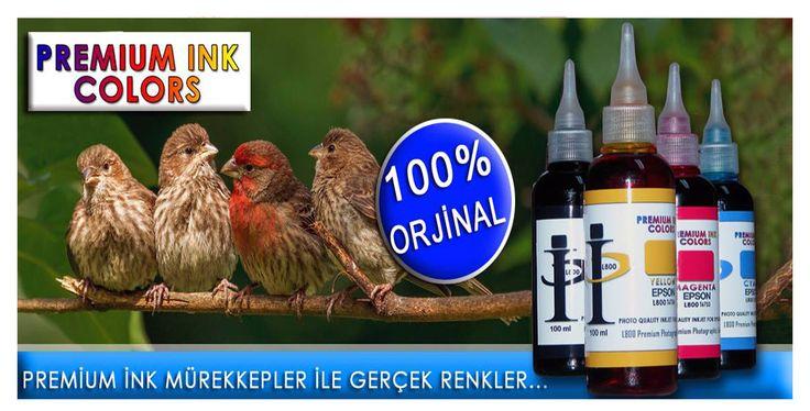 Buy Online Epson L210 Mürekkep for Print, Scan, Copy Online at Low Price on Epson murekkep in various colours. Visit More www.epsonmurekkep.com