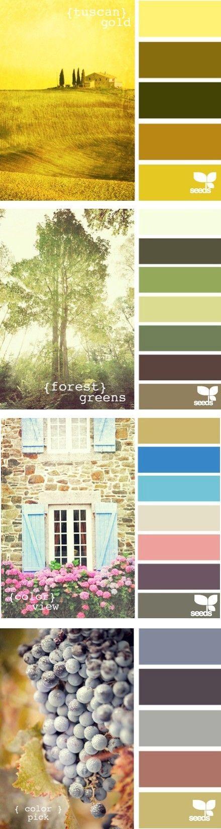 paletas de colores                                                                                                                                                                                 Más