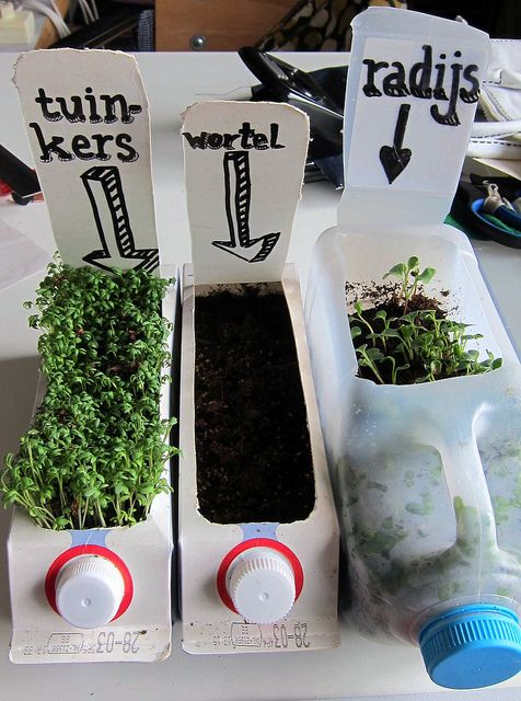 What a fun project! allotment in a bottle 2 de wortel heeft het niet gehaald...the carrot didn't make it...