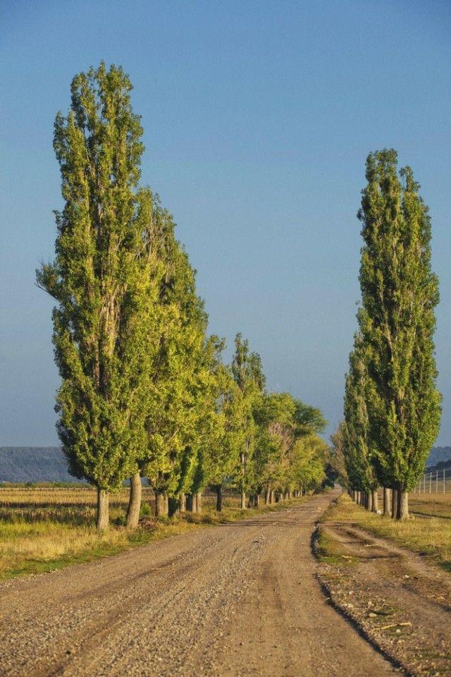 Travel #Moldova, Europe